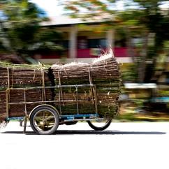 Palawan - On the Road