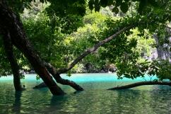 Palawan - Underground River 2